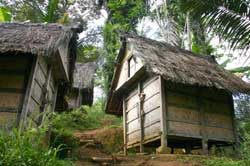 Rumah perkampungan suku baduy
